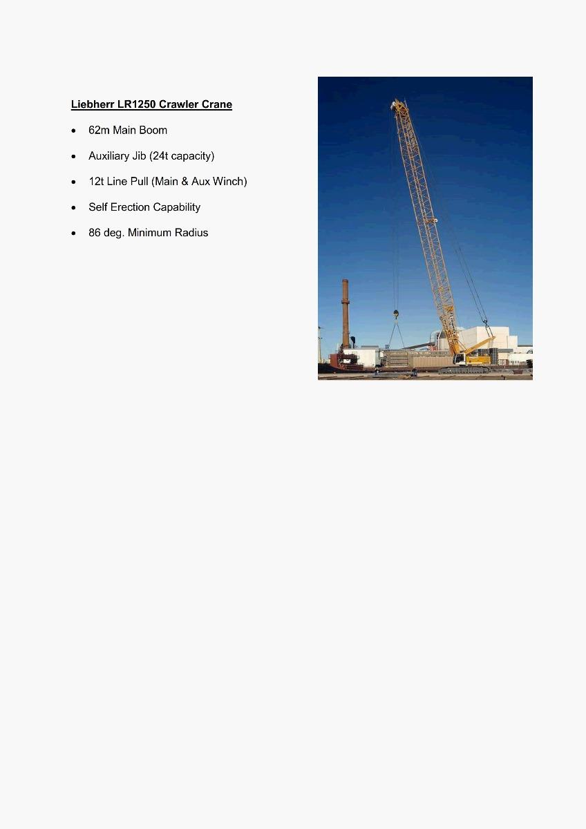 250T Crane Features 300