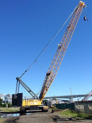 Alfasi Hire present the Liebherr LR1250